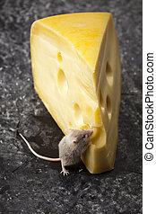 Ratón, un tema rural vívido y colorido