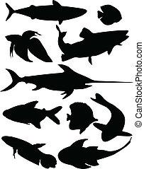 Recolección de pescado, vector