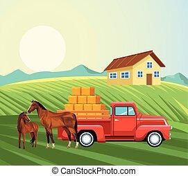 recolección, pradera, agricultura, balas, heno, caballos, casa, camión