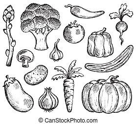 Recolección temática Vegetable 2