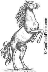 Recorriendo vectores de caballos de deporte equino caballo