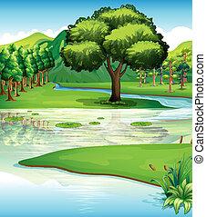 Recursos de tierra y agua