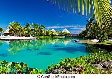Recursos tropicales con una laguna verde y palmeras