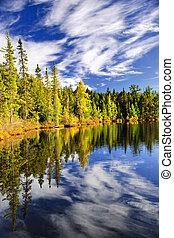 reflejar, cielo, bosque lago