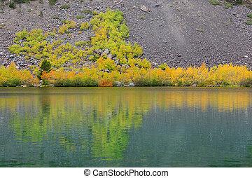 Reflejos de otoño
