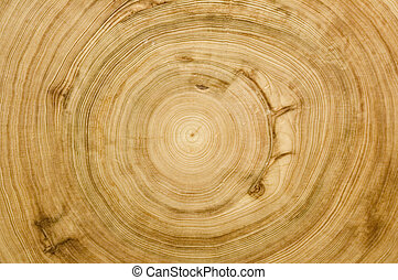 registro, corte, textura, woodgrain
