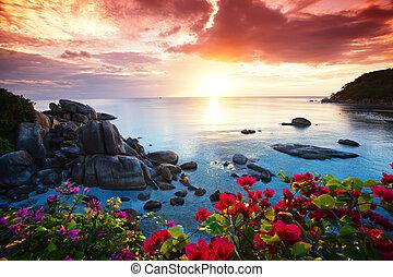 Resort playa Tranquil, hermosa mañana gloria en el Koh Samui