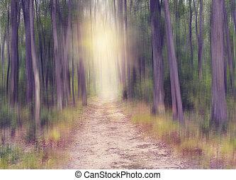 resumen, bosque, plano de fondo