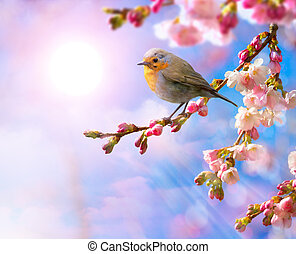 resumen, plano de fondo, frontera, flor, primavera, rosa