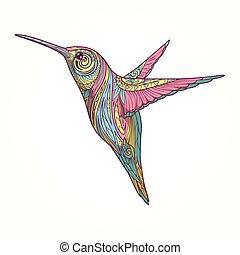 resumen, vector, ornamento, colibrí