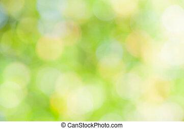 resumen, verde, defocused, plano de fondo