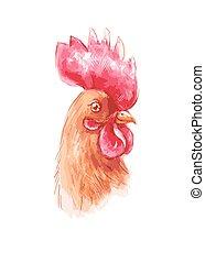 Retrato de un gallo marrón en acuarela y lápiz de color, ilustración vectorial