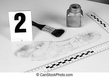 Revelación de pruebas forenses.