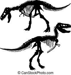 rex, t, esqueleto