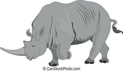 rinoceronte, o, ilustración, rhinocerotidae