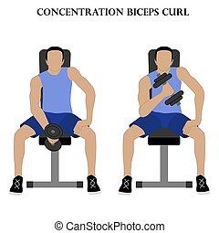 rizo, fuerza, ejercicio, vector, concentración, entrenamiento, ilustración, bíceps