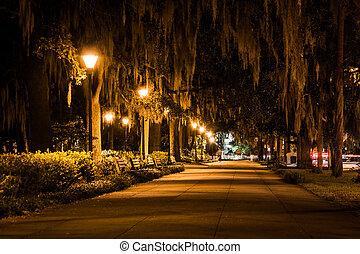 Robles y caminos de noche en el parque forsyth, Savannah, Georgia.