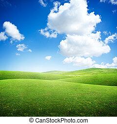 rodante, campos, verde