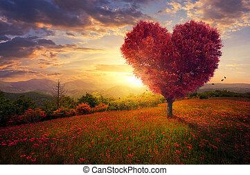 rojo, árbol, corazón formó