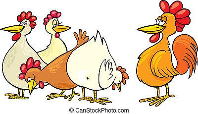 Rooster y gallinas
