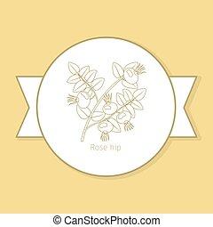 Rosa de la medicina planta etiqueta amarilla