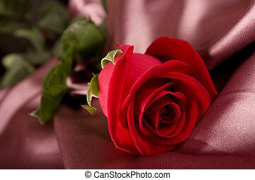 Rosa roja en seda