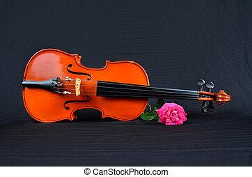 rosa, tela, viejo, seda, violín