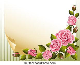 rosas, plano de fondo
