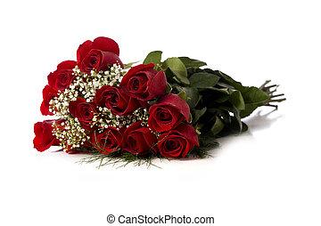 Rosas rojas en blanco