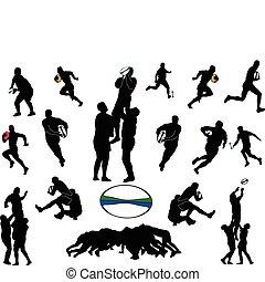 rugby, vector, -, colección