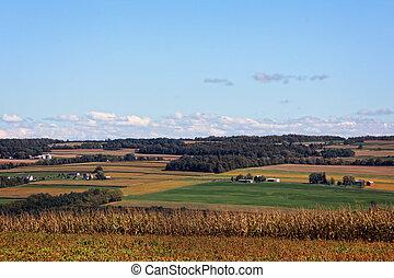 rural, tierras labrantío