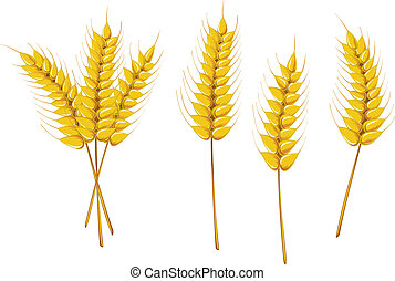 símbolos, agricultura