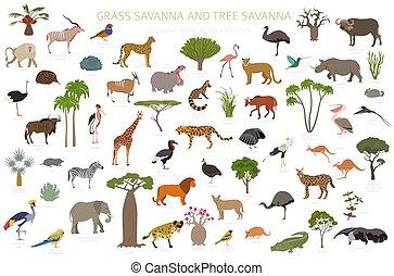 sabana, conjunto, región, vegetations, árbol, ecosistema, biome, aves, infographic., pasto o césped, prarie, bosque, animales, diseño, pampa., prado, sabana, natural
