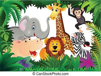 Safari caricatura