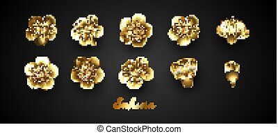 sakura, flores, conjunto, dorado