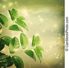 Sale con luz verde