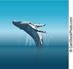 Saltando ballena jorobada de dibujos animados en la ilustración vectorial del océano.