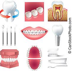 Salud de dientes y vector de estotología