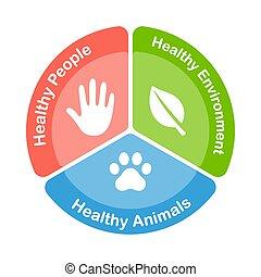 salud, diagrama, uno