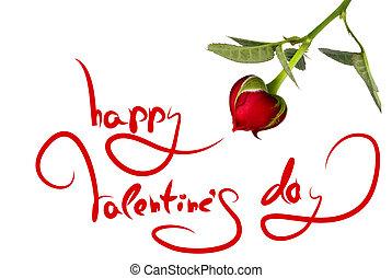 Saludos para el día y el corazón de San Valentín de rosas aislados en blanco