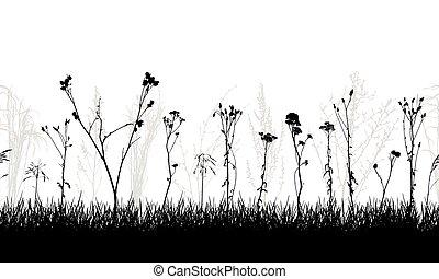 salvaje, vector, illustration., pradera, plantas, seamless, silhouette., malas hierbas, patrón