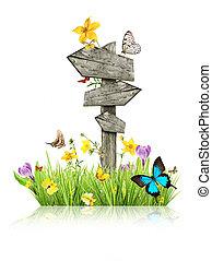 Señales en la pradera con mariposas, concepto de primavera