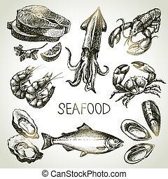 seafood., bosquejo, conjunto, ilustración, mano, vector, dibujado