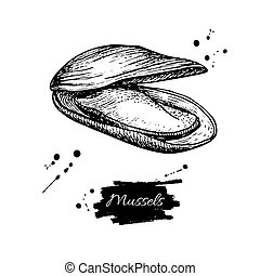 seafood., estilo, illustration., vendimia, mano, vector, mejillón, dibujado, grabado, ostra, sketch.