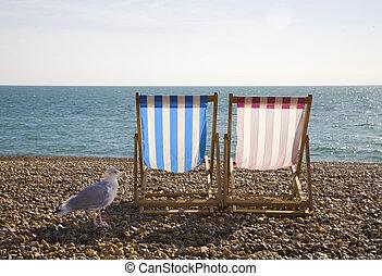 Seagul y sillones, Brighton