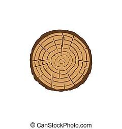 sección transversal, coloreado, anillos, tronco, vector, árbol, icono