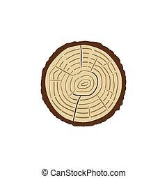sección transversal, coloreado, tronco, anillos, vector, árbol, icono