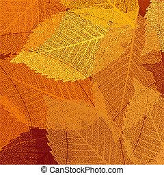 seco, hojas, eps, otoño, 8, template.