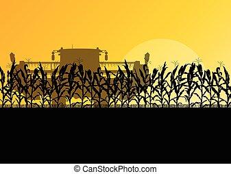 segador, maíz, amarillo, otoño, campo, vector, combinar, rural, resumen, cosechar