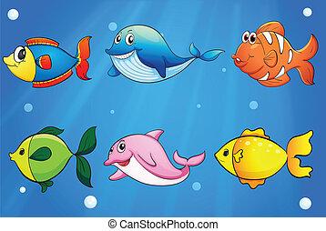 Seis peces coloridos y sonrientes bajo el mar